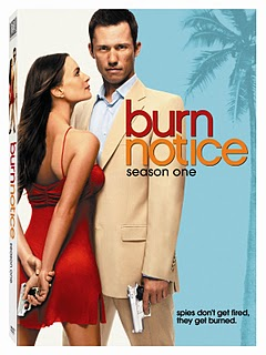 Gabrielle anwar, burn notice