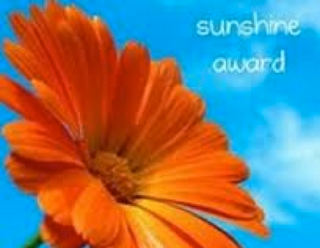 Blogger Inspiration – Sunshine Award x2!!