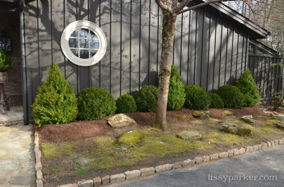 Conical and round boxwood were added against the house wall