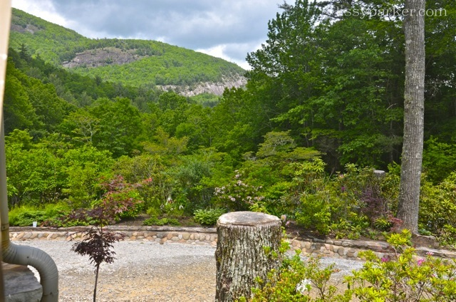 Another view from the porch–there is even a waterfall near by