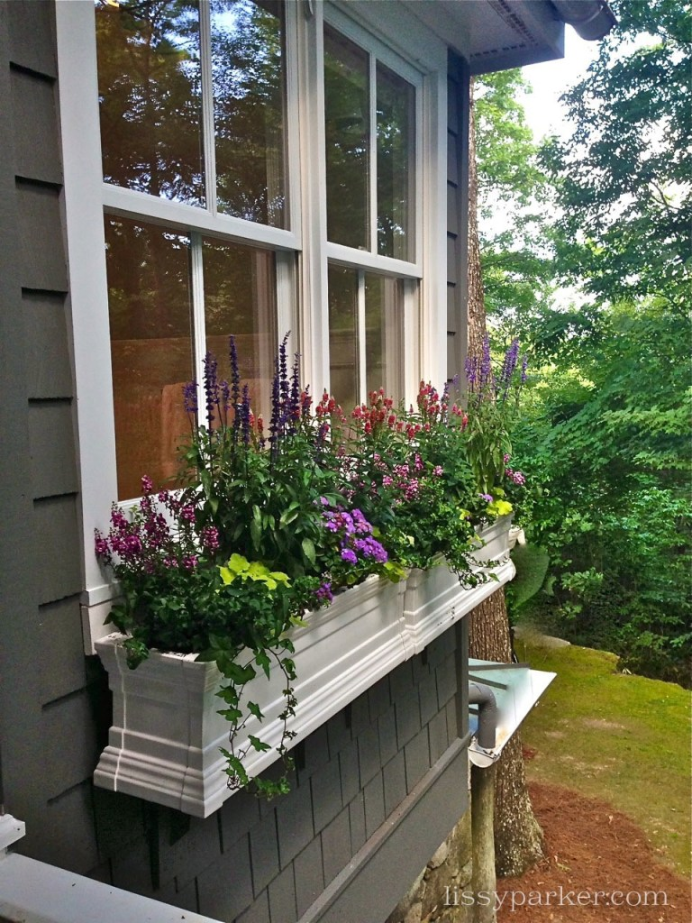 Window boxes lined the front of the house