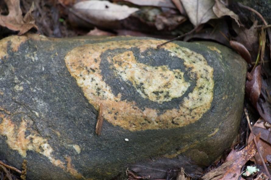 Beautiful Bulls-eye rock is tucked neatly among the plants