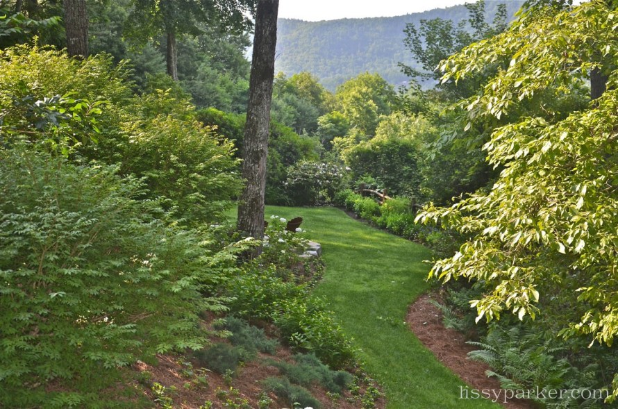 Lush green lawn is edged by a rustic fence and rhododendron and boxwood