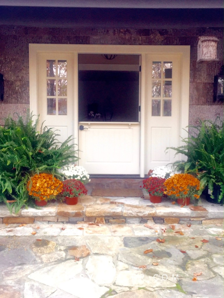 Porch doors