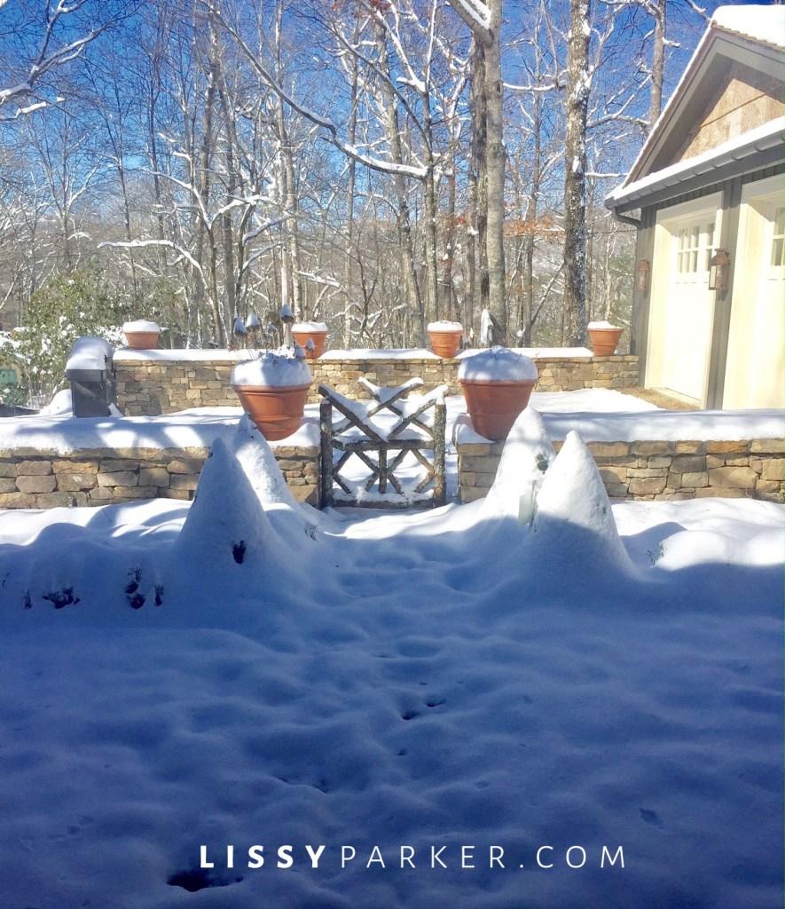 Winter white garden
