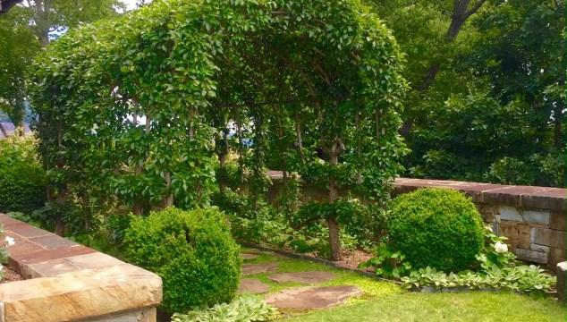 Highlands Mountains in Bloom Garden Tour, Part Three—More English Garden