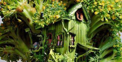 broc-house