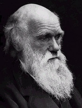 Charles Darwin L