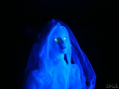 Ghost Bride