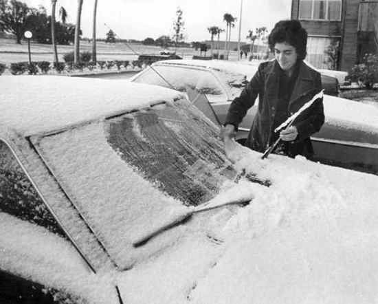 Petpeevesandrearendcollisions Snow Tampa January 19 1977
