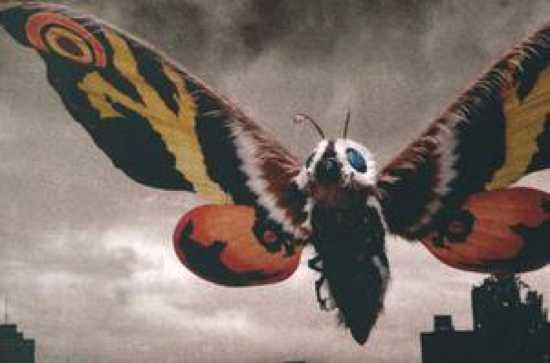 413520-Mothra Large