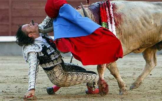 Bullfighter-Gored- 1641811C