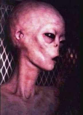 real alien pictures and videos
