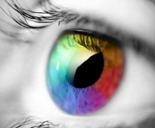 Color Vision2