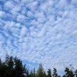 Stratocumulus Clouds 5
