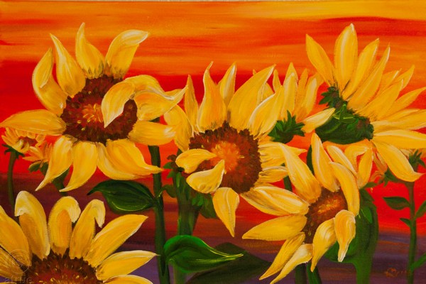 Sunflower-Sunset