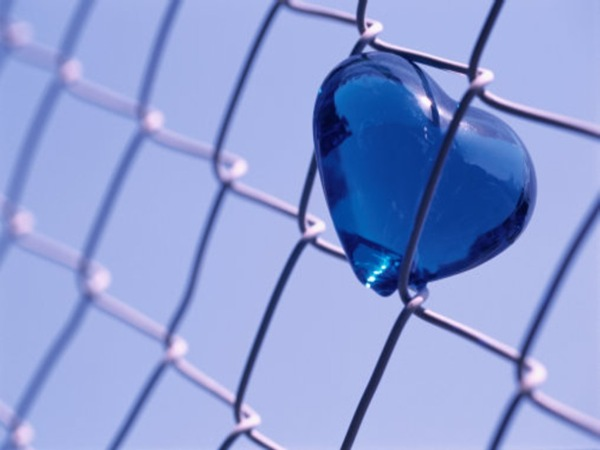 A Glass Heart Stuck in a Prison Fence