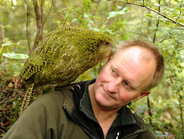 Kakapo Chick Solstice One Nibbles On Stephen Jaqui 4E324Aa85E