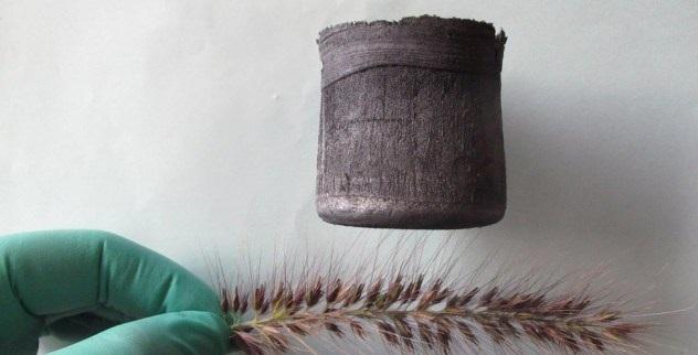 aerogel-grass-spines-e1371678953130