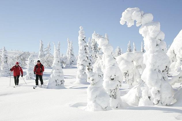800px-Skiing_at_Riisitunturi_National_Park