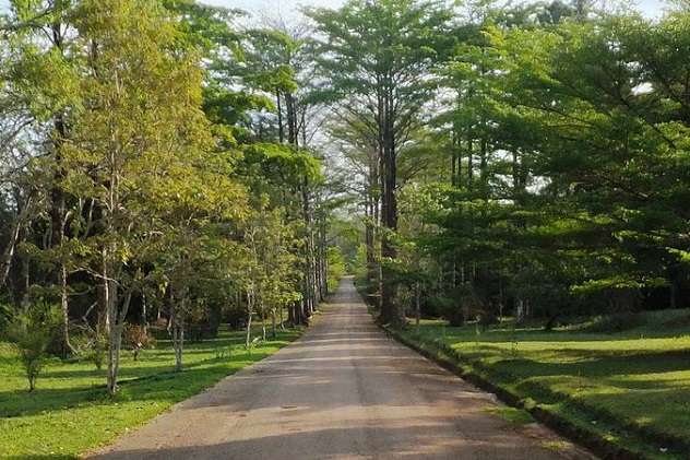 Entrée_du_jardin_du_père_Gillet_à_Kisantu,_Bas-Congo