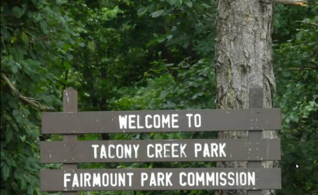 7-tacony-creek-park