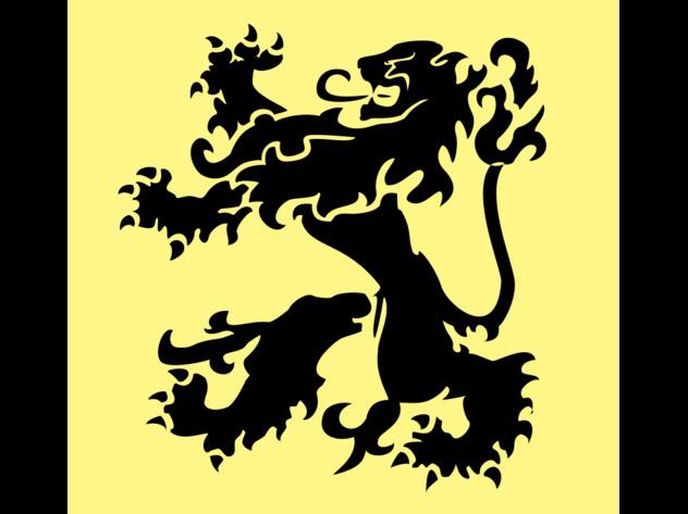 10-flemish-flag