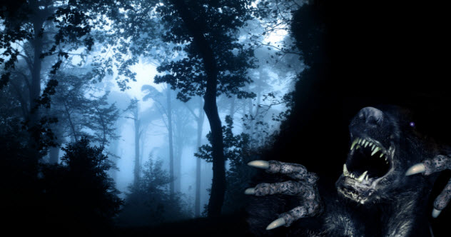 5-demons-forest_000059195754_Small