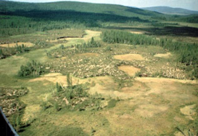 4-Tunguska-epicenter