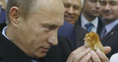 feature-putin-chick
