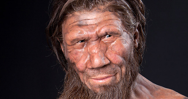 Scientifically accurate Neanderthal model by Kennis & Kennis