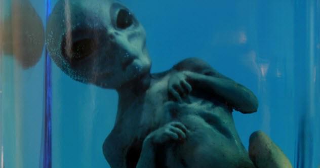 10-alien-corpse_3414890_SMALL