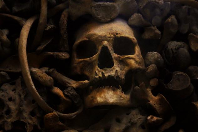 3-vampire-skull_77141677_SMALL