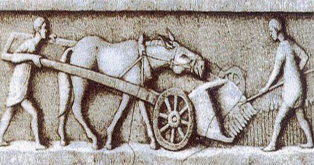 5-roman-harvester