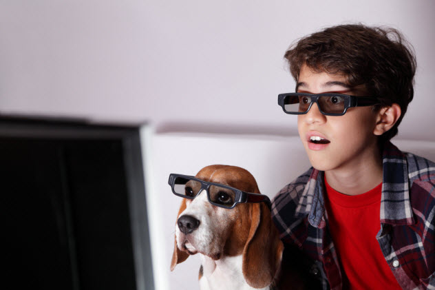 7-dog-glasses-watching-tv_31429794_SMALL