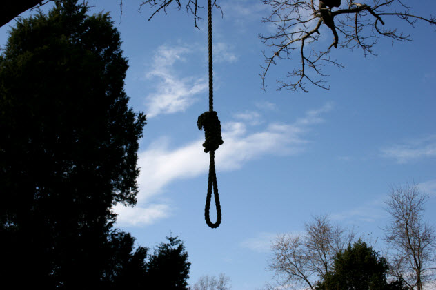 6-noose-tree_1970753_SMALL