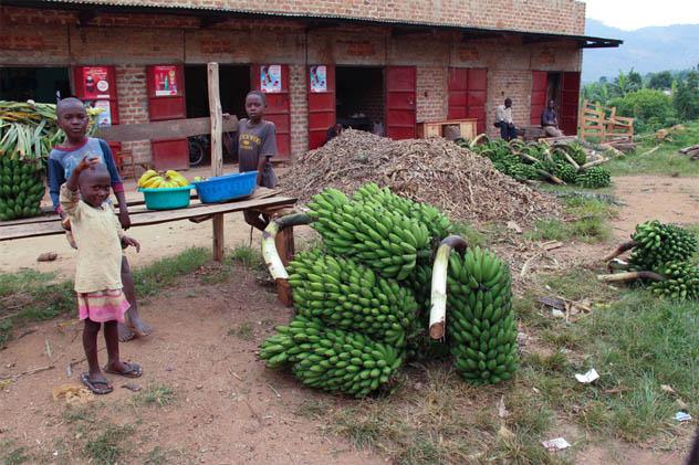 Uganda: Banana Market