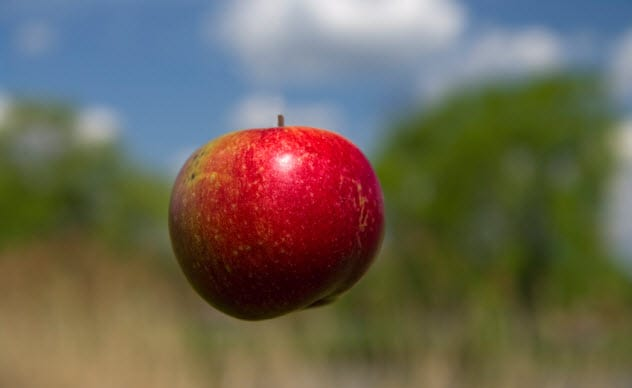 10a-levitating-apple_9326266_SMALL