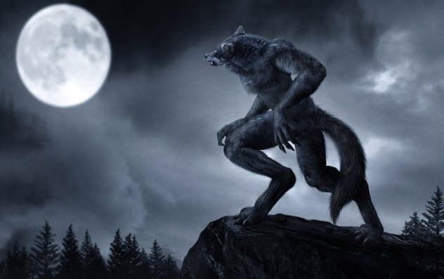 8b-werewolf