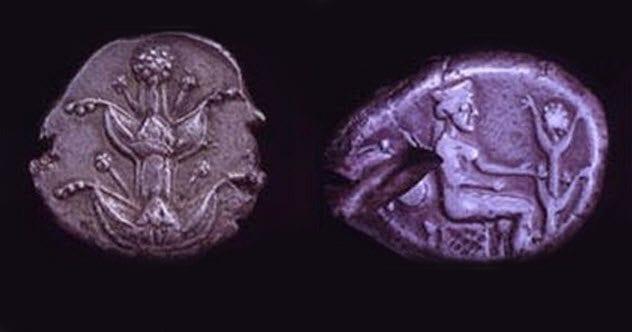 10b-silphium