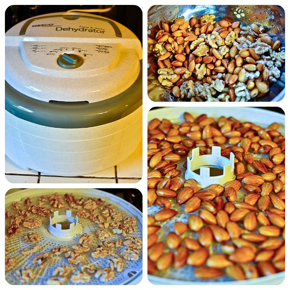soaking and dehydrating nuts