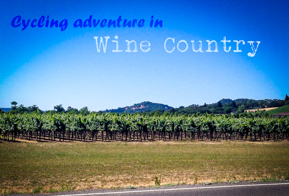 cycling in wine country