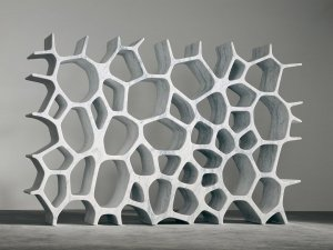 voronoi shelf. how amazing is this?