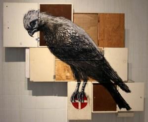 falcon1 roa
