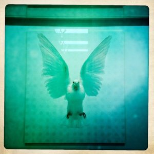 the incomplete truth damien hirst