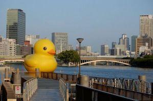 florjn hofman rubber duck osaka