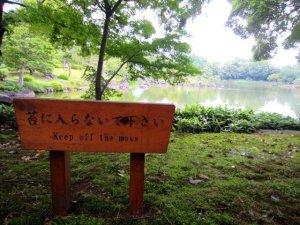 kiyosumi gardens in tokyo 8