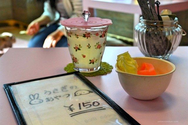 tokyo pet cafe12