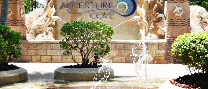 ADVENTURE COVE FOR FYNN'S 2ND BIRTHDAY