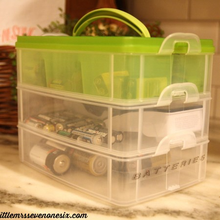 Battery organization container